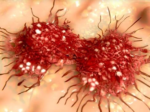 कैंसर जैसे घातक बिमारी से बचने के लिए खाने में इन चीजों का करें इस्तेमाल!